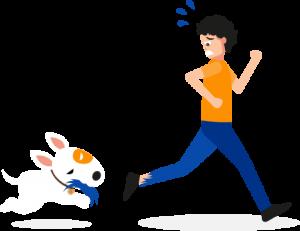 asigurare-caini-periculosi-2